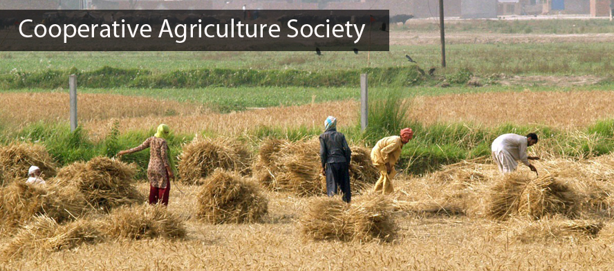 Cooperative Agriculture Society